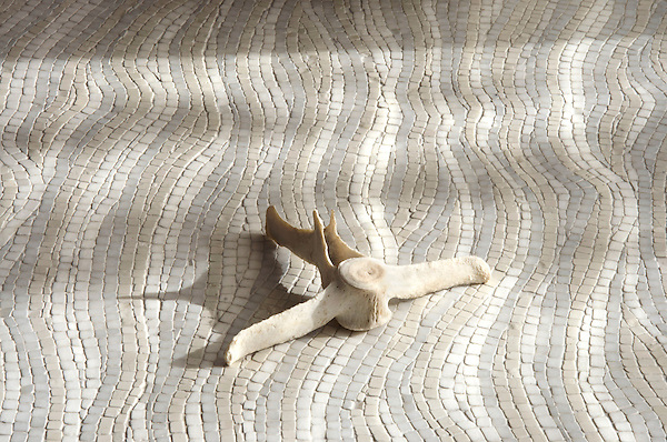 Dune, a stone hand cut tumbled mosaic, shown in Bianco Antico, Afyon White, and Thassos.