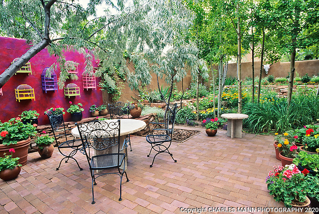 This Santa Fe patio and backyard garden was transformed into a playful and interesting space when designer Deena Perry added a purple wall and decorated it with colorful birdcages.