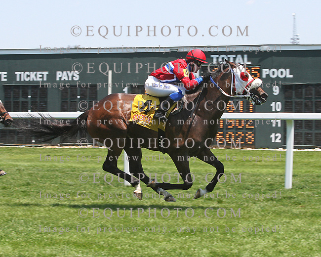 Voices Only #3 with Nora Holm riding won the $30,000 Longines Fegentri Championship for Ladies Race at Parx Racing in Bensalem, PA on June 10, 2017. Photo By Barbara Weidl/EQUI-PHOTO