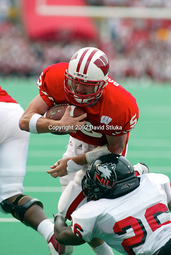 University of Wisconsin quarterback Brooks Bollinger (5) rushes for a touch down during the Northern Illinois football game at Camp Randall in Madison, Wisconsin, on 9/14/02. The Badgers beat Northern Illinois 24-21 (Photo by David Stluka)