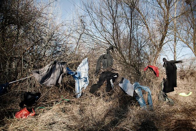 Serbia, Subotica, 18.12.2011: On a sunny day the clothes are hung up to air in a bush. <br /> <br /> Serbien, Subotica, 18.12.2011: Kleidung wurde an einem sonnigen Tag zum L&uuml;ften auf die B&uuml;sche gehangen.<br /> <br /> [ CREDIT: www.throughmyeyes.de - Merlin Nadj-Torma - Boeckhstr. 26 - 101 - 10967 Berlin - phone +49-177-8279119 - merlin@throughmyeyes.de ]