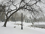 Washington Park winter. Denver, Colorado