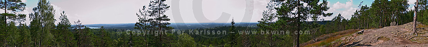 Panoramic view from Skuruhatt, one of Småland's highest points, 337 m above sea level. Smaland region. Sweden, Europe.