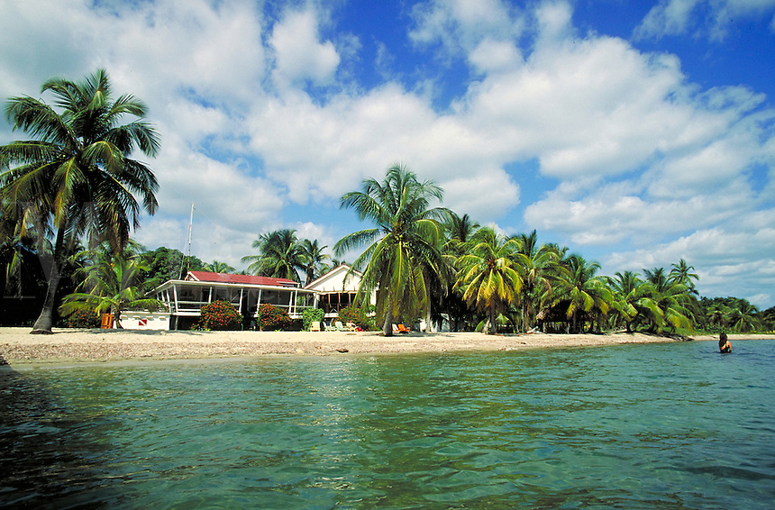 Rum Point Inn surrounded by palm trees on the beach Placencia, Belize. Placencia, Belize Central America.