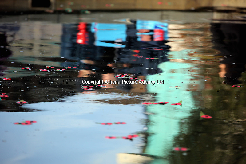 Pictured: Poppies float on the surface of the fountain Friday 11 November 2016<br />