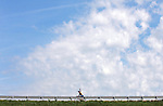 A lone rider crosses the Rathbun Dam along the century loop Thursday morning on RAGBRAI XXXVII.