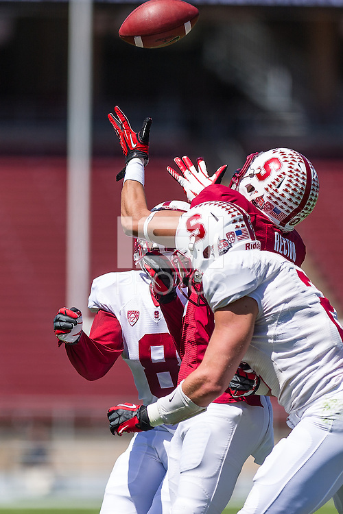 STANFORD, CA - April 12, 2014:  Michael Rector during the Stanford Cardinal Spring Football game at Stanford Stadium in Stanford, CA.