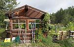 Belle Rock greenhouse
