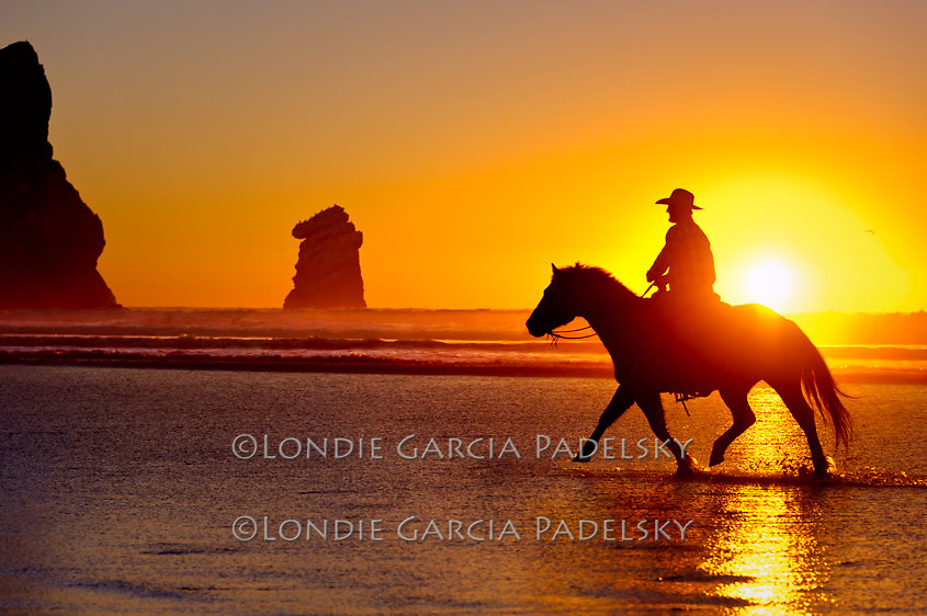 Riding Horses at sunset on the Central Coast, California