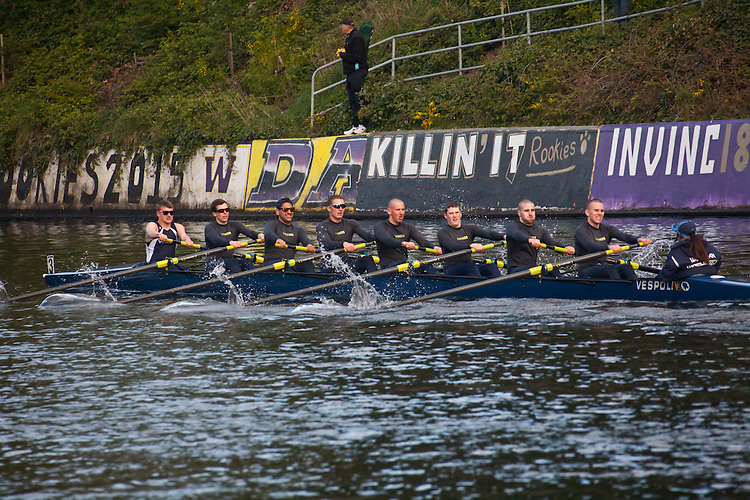 Rowing, Seattle, The Husky Open, April 4 2015, rowing regatta, Montlake Cut, Western Washington University, Mens Varsity eight, College M V8, crew,