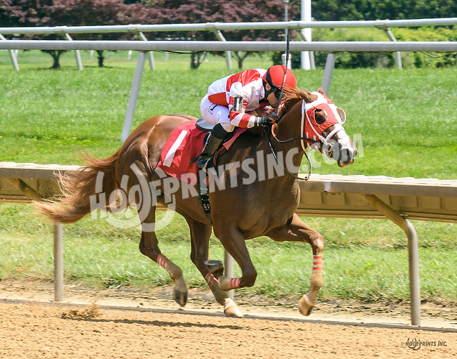 Gold Beach winning at Delaware Park on 7/26/17