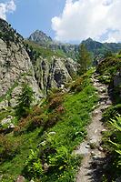 CHE, SCHWEIZ, Kanton Bern, Berner Oberland, Frau beim Wandern mit Rucksack | CHE, Switzerland, Bern Canton, Bernese Oberland, woman hiking