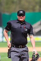 Home plate umpire Lance Seilhamer during a Midwest League game between the Wisconsin Timber Rattlers and the Great Lakes Loons on May 12, 2018 at Fox Cities Stadium in Appleton, Wisconsin. Wisconsin defeated Great Lakes 3-1. (Brad Krause/Four Seam Images)