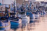 Europe/France/Bretagne/29/Finistère/ Saint-Guénolé: Retour des sardiniers au port à l'aube et  déchargement de  la pêche
