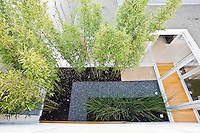 Modernistic atrium garden. Andrea Cochran Landscape Architecture Design. THIS IMAGE IS NOT AVAILABLE FOR LICENSING.