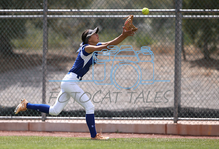 Basic Wolves' Lauren Koshak makes a catch in right field against the Douglas Tigers in the NIAA 4A softball tournament, in Reno, Nev., on Thursday, May 17, 2018. Douglas won 8-5. Cathleen Allison/Las Vegas Review-Journal