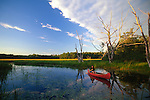 Woman canoeing, Litchfield, Kennebec County, Maine USA.