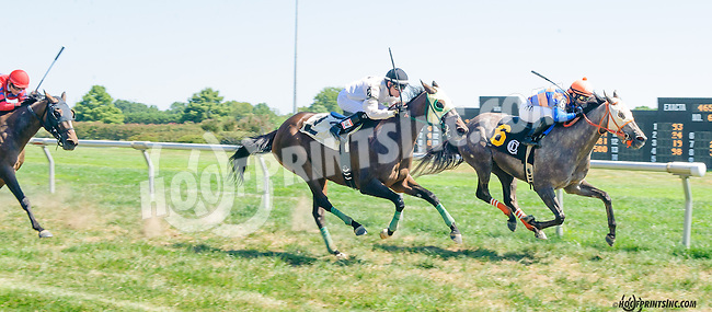 Les Miards winning at Delaware Park on 9/7/15