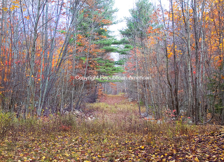SOUTHBURYCT.-28 OCTOBER 2010 102910DA08-  This is the start of a network of logging trails in Torrington accessible from Red Mountain Avenue that trail advocates say could be turned into walking trails.<br /> Darlene Douty Republican-American