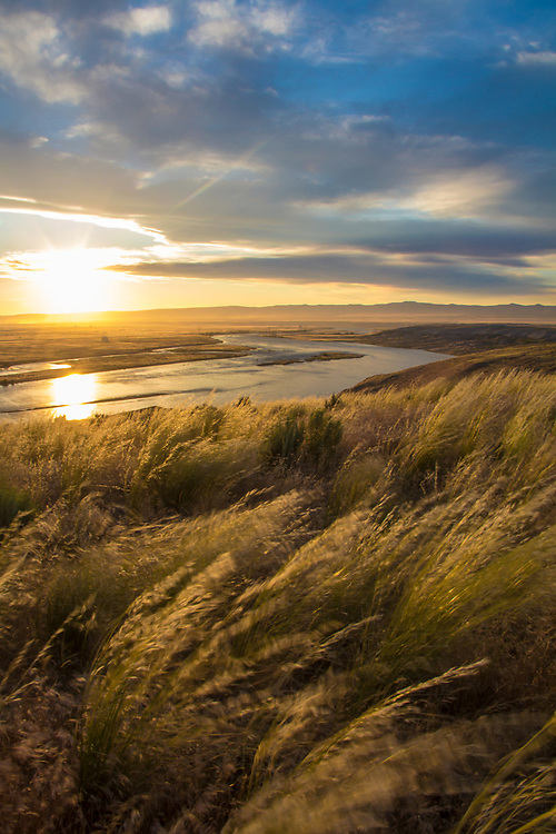 Hanford Reach National Monument, White Bluffs, Wahluke Slope, Columbia River, shrub steppe habitat, grassland, Columbia Basin, eastern Washington, Washington State, Pacific Northwest, USA, North America,