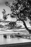 Black and white photo of Russell Pier, Bay of Islands, Northland Region, North Island, New Zealand