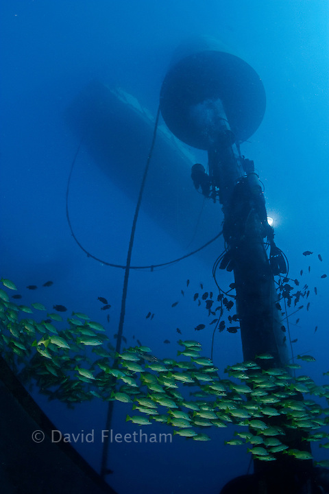 A diver (MR) works on installing a massive wave energy buoy off Kaneoho Bay, Oahu.  The 40-kW experimental buoy, employs the bobbing motion of the buoy to drive an electrical generator, that then sends power to the island via underwater cable, Hawaii. The divers commercial barge is above.