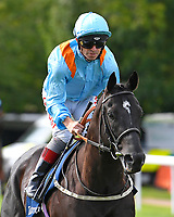 Marie's Diamond ridden by Franny Norton goes down to the start of The Tattersalls Sovereign Stakes during Horse Racing at Salisbury Racecourse on 15th August 2019