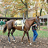 Disco Barbie before The Xtra Heat Stakes at Delaware Park on 10/27/12...