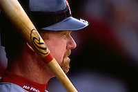SAN FRANCISCO, CA - Mark McGwire of the St. Louis Cardinals waits to hit during a game against the San Francisco Giants at Candlestick Park in San Francisco, California in 1998. Photo by Brad Mangin