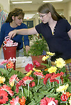 WOODBURY, CT -11MAY 2007 - -051107DA01--  Summer Churchill of Woodbury picks out her Happy Mother's Day pick to go inside of her flowers that she purchased with the help of  PTO member, Danielle Shaker at Woodbury Middle School. The PTO held its annual Mother's Day plant sale from 7:30 to 3:30 Friday in the main lobby of the school selling plenty of cell packs, perennials and hanging baskets. The sale was open to the public and students. Proceeds will go towards a digital Visual Presenter for the school.<br />  Darlene Douty/Republican-American