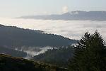 Santa Cruz Mountains morning, Panorama Ridge
