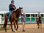 LOUISVILLE, KENTUCKY - MAY 02: Trainers Bill Mott and Mark Casse talk on the track during training at Churchill Downs in Louisville, Kentucky on May 2, 2019. Scott Serio/Eclipse Sportswire/CSM