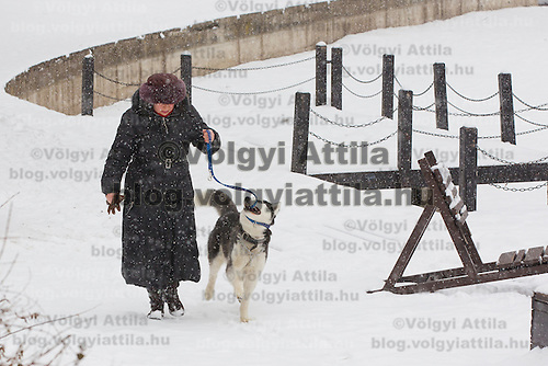 Pedestrian walks a dog in the snow covered City Park in Budapest, Hungary on February 17, 2012. ATTILA VOLGYI