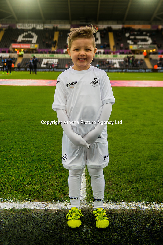 Mascots during the Premier League match between Swansea City and Leicester City at The Liberty Stadium, Swansea, Wales, UK. Sunday 12 February 2017