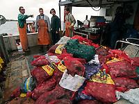 Quahoggers at work on Narragaanseet bay near Warwick, Rhode Island