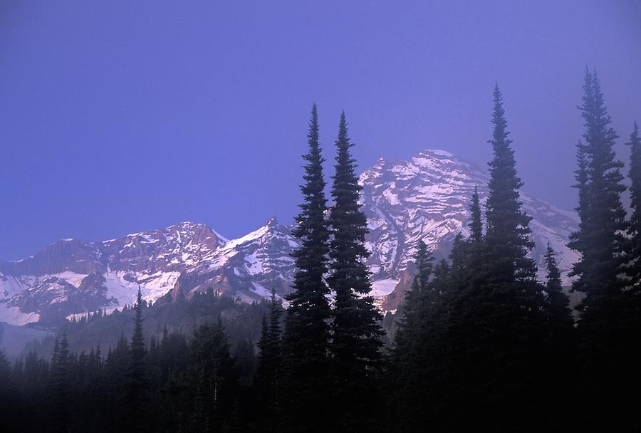 Mt Rainier framed by trees at sunset, Mount Rainier National Park, Washington