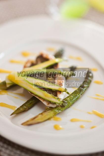 Europe/France/Bretagne/22/Côtes d'Armor/Paimpol: filet de saint-pierre aux asperges  recette de Vincent Prémorvan Restaurant La Cotriade