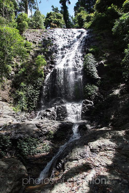 Tristan Waterfall Dorrigo World Heritage National Park. NSW