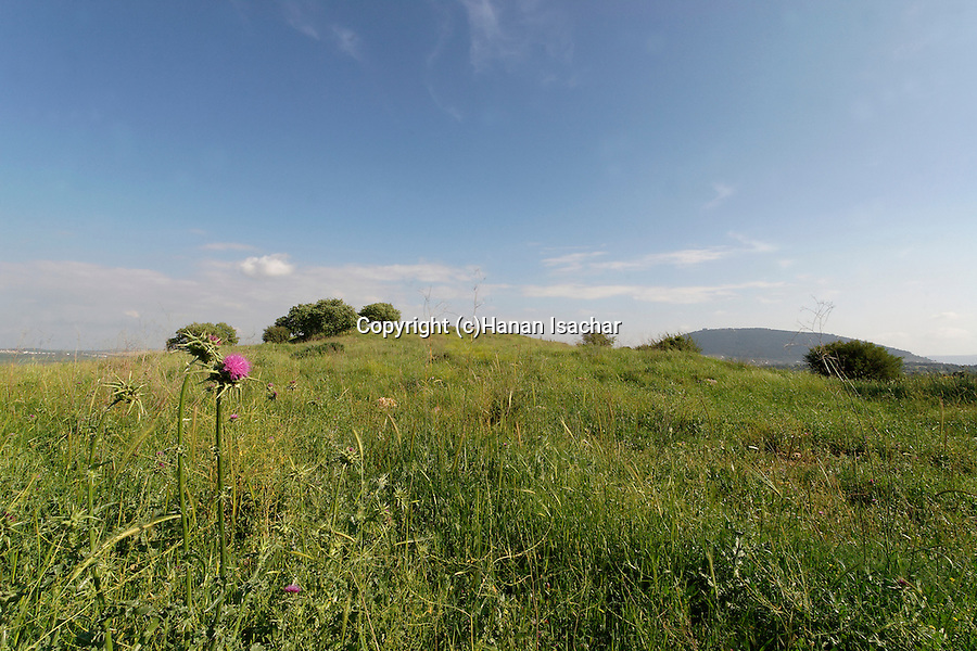 Israel, Lower Galilee. Tel Govel by Beth Keshet scenic road, Mount Tabor is in the background