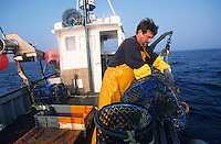 """Europe/France/Bretagne/29/Finistère/Le Conquet : Pêche au homard sur le """"Louarn Ar Mor"""" avec Alain Bras  [Autorisation : 265]"""