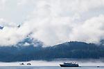 Halleck Harbor of Saginaw Bay in Alaska's Inside Passage, USA