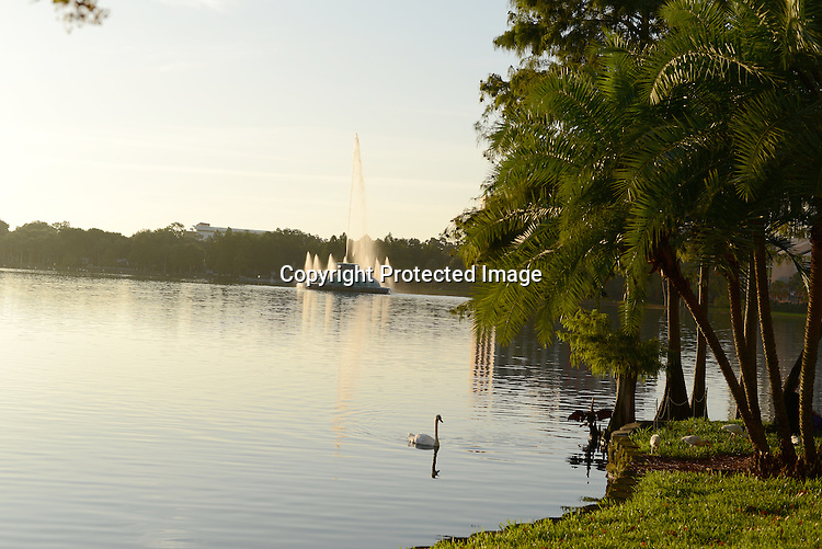 Various photographs of Orlando, Florida