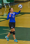 1 November 2015: Yeshiva University Maccabee Setter, Defensive Specialist, and team co-Captain Aliza Muller, a Senior from Los Angeles, CA, serves against the SUNY College at Old Westbury Panthers at SUNY Old Westbury in Old Westbury, NY. The Panthers edged out the Maccabees 3-2 in NCAA women's volleyball, Skyline Conference play. Mandatory Credit: Ed Wolfstein Photo *** RAW (NEF) Image File Available ***