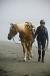 Woman and horse on the beach in Crescent City California
