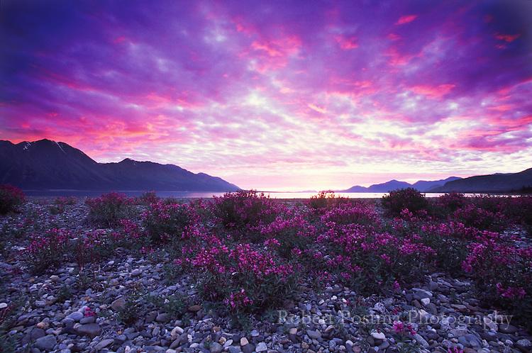 Sunset during the midnight sun over Kluane Lake, Yukon.