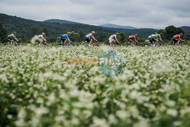 Part of the 42 man breakaway during Stage 12 of the 2019 Tour de France running 209.5km from Toulouse to Bagneres-de-Bigorre, France. 18th July 2019.<br /> Picture: ASO/Pauline Ballet | Cyclefile<br /> All photos usage must carry mandatory copyright credit (© Cyclefile | ASO/Pauline Ballet)