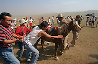 Khui Doloon Khudag, Mongolia, July 2003..Competitors & spectators at the horse racing in the national Naadam 40 kilometres outside Ulaanbaatar..Spectators rush to wipe the sweat from a winning horse; they believe that by doing so the horse's energy will be transferred to themselves.