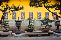 Bonzai trees and bronze lanterns in the courtyard of the Jade Buddha Temple, Shanghai, China