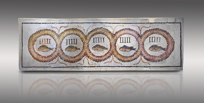 Pictures of a geometric Roman doorstep mosaics depicting five fishes surrounded by bars and a medallion, from the ancient Roman city of Thysdrus. 3rd century AD The Small Baths in the M'barek Rhaiem area. El Djem Archaeological Museum, El Djem, Tunisia.<br /> <br /> The mosaic depicts the emblem of the Pentasii, a powerful Nortyh African Roman association that organised and  maintained the wild animals and hired animal killers to carry on the games in ampitheatres.