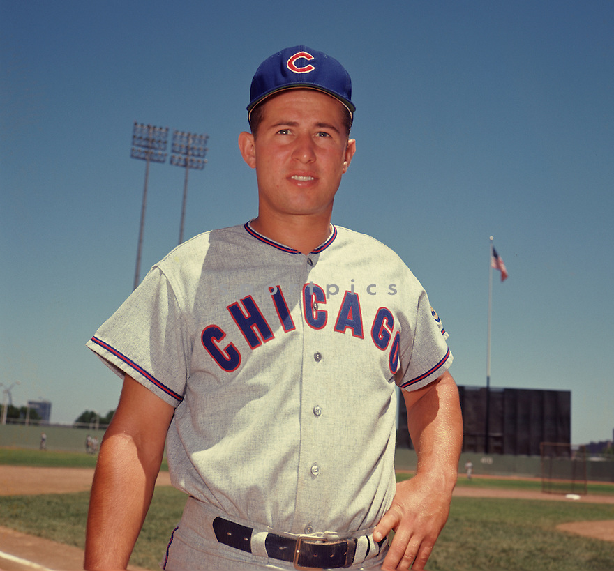 Chicago Cubs Ron Santo (10) portrait from his 1964 season with the Chicago Cubs. Ron Santo played for 15 years with 2 different teams, was a 9-time All-Star, and was inducted to the Baseball Hall of Fame in 2012.